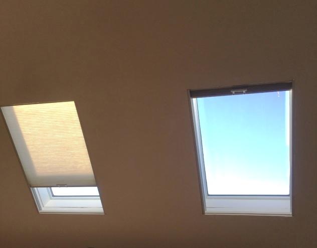 Skylight Leaks and Mold