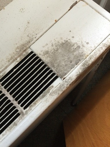 Mold on AC Unit in College Dorm