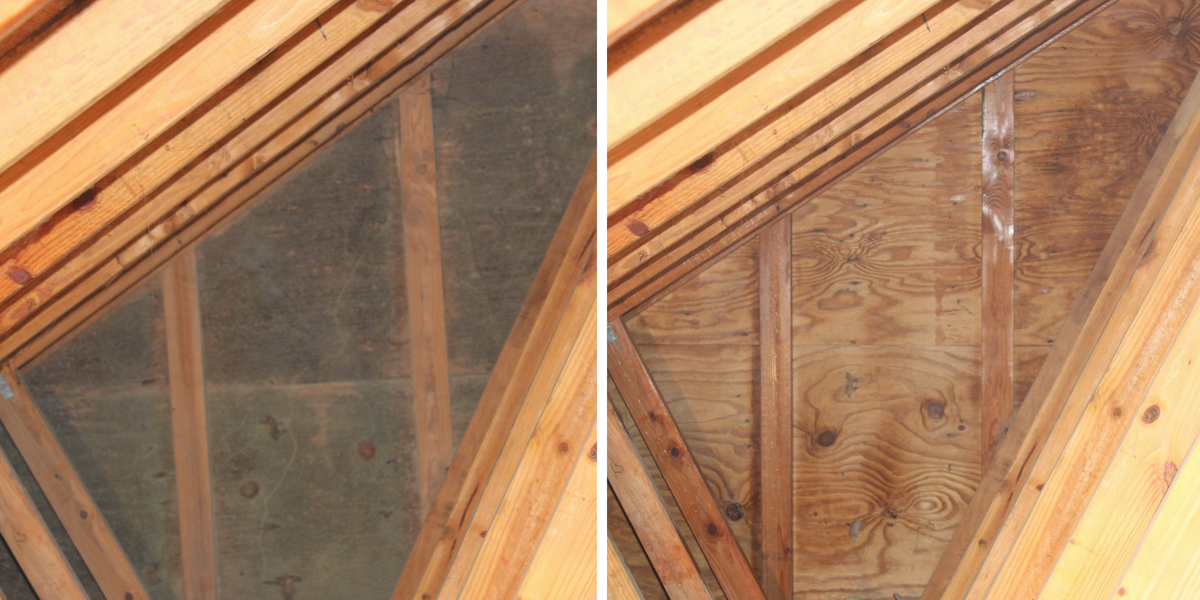 how to prevent attic mold