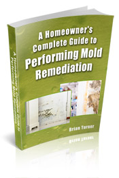 Review of the book A Homeowner's Complete Guide to Performing Mold Remediation by Brian Turner