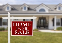 Home Selling and Mold