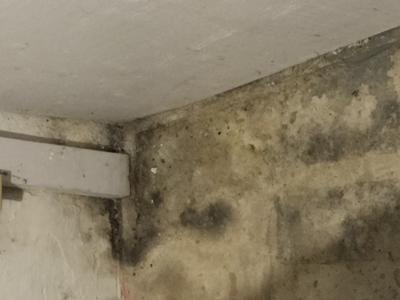 Floor in basement