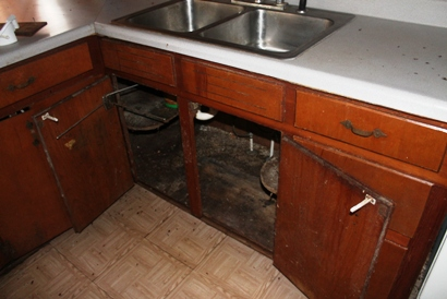 mold under kitchen sink