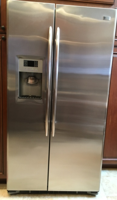 refrigerator with mold