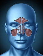Sinus congestion from mold