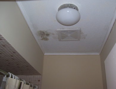 mold inspection checklist before buying