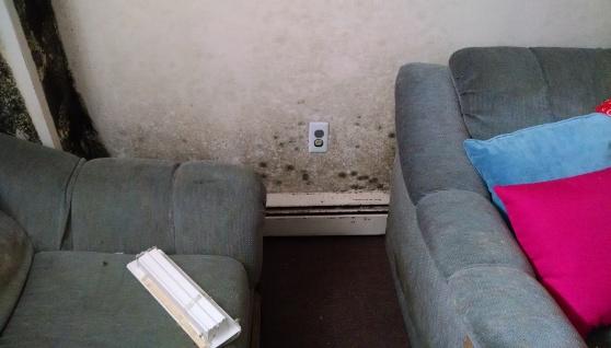 furniture mold